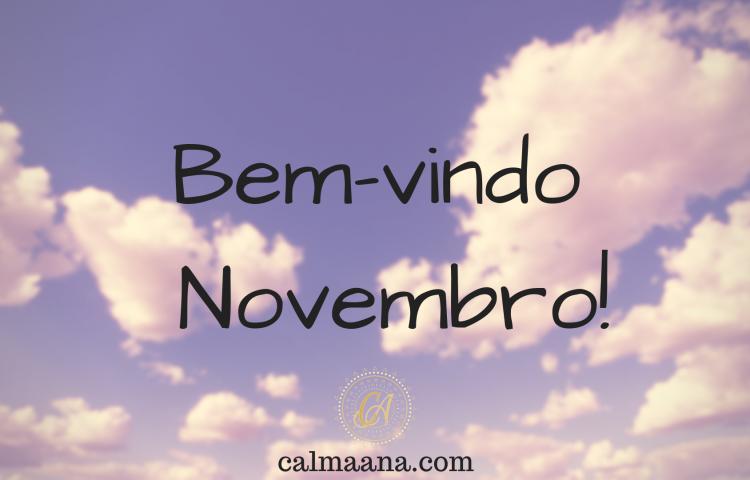 Bem-vindo Novembro!